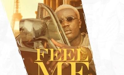 Pa Brymo Ft Slimcase - Feel Me