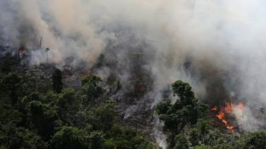 An aerial view of a tract of Amazon jungle burning as it is cleared by loggers and farmers near the city of Novo Progresso, Para state.
