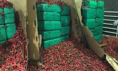 Photo: Customs seize four tons of marijuana worth $2.3 million hidden in a consignment red pepper!