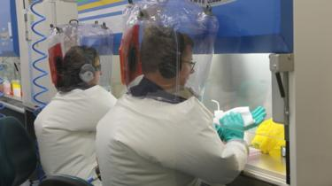 CSIRO scientists at work in the lab testing the virus vaccines