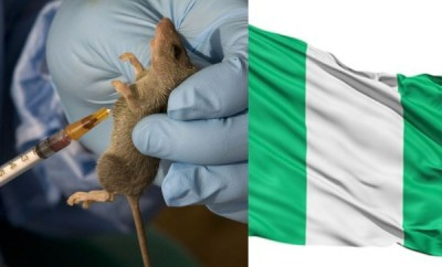 Emergency phase for Lassa Fever outbreak is over  ? NCDC