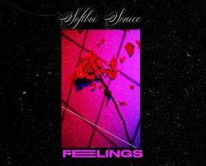 Sofboi Sonice - Feelings (EP)