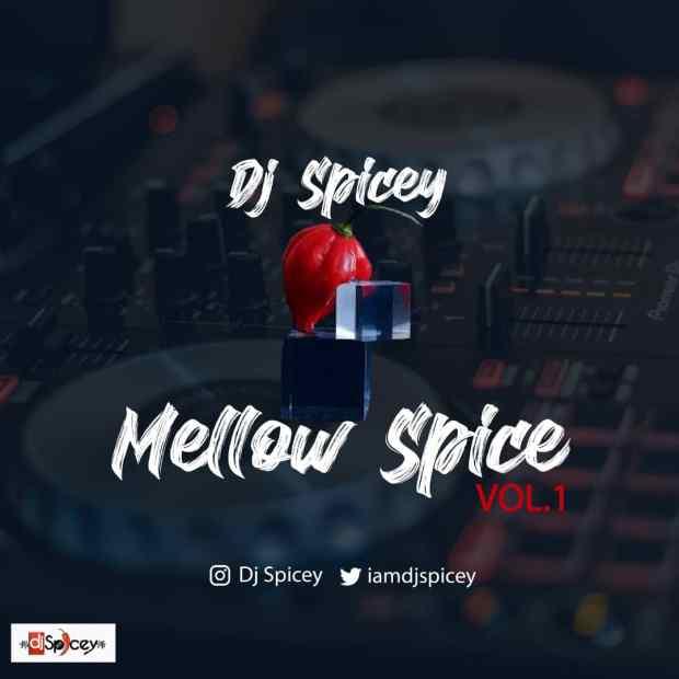Dj Spicey - Mellow Spice (Vol. 1)