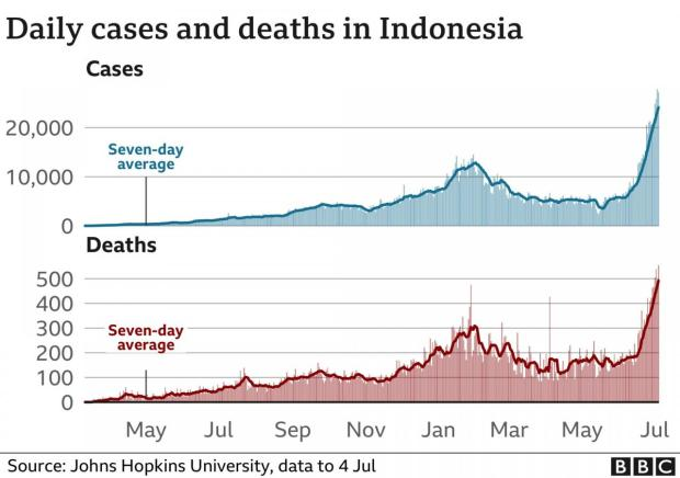 Indonesian covid case numbers and cases