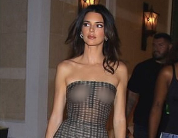 Kendall Jenner leaves nothing to the imagination as she showcases her ni**les in sheer tube top (photos)
