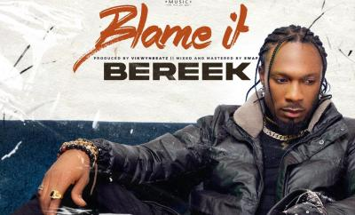 Bereek - Blame It (Prod. by VikwynBeatz)