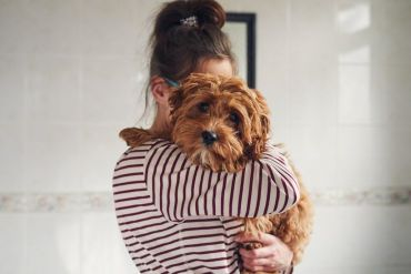 File photo of dog and owner