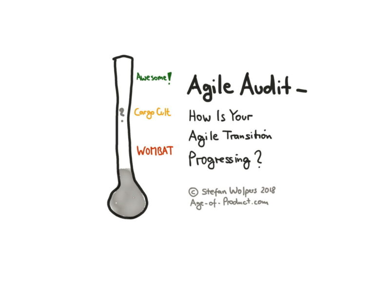 Agile Fluency™ Diagnostic — Find all Articles on Age-of