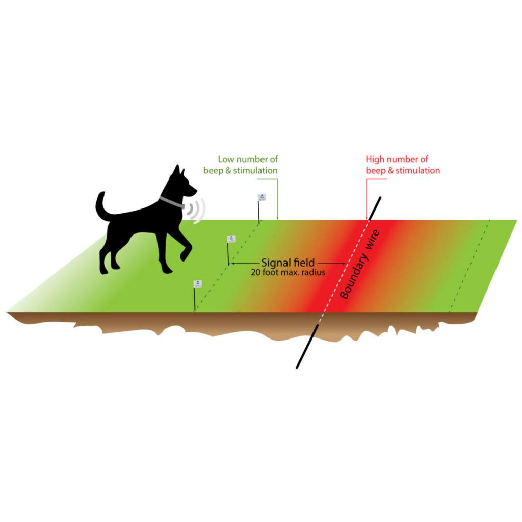hight resolution of signal field professional dog fence