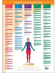Joint range of motion muscle movement chart also kent health systems rh kenthealth