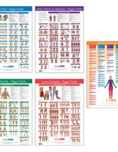 Trigger point charts chart set also joint range of motion muscle movement kent health systems rh kenthealth