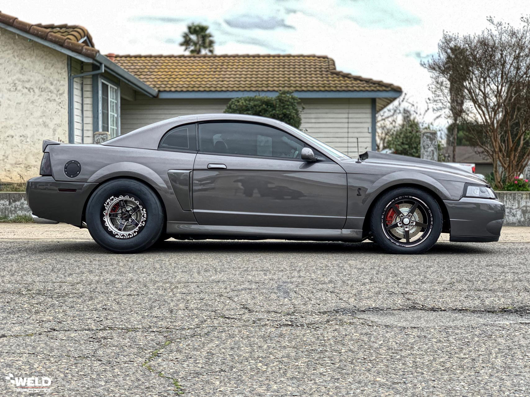 hight resolution of matte black ford mustang 2003 cobra terminator weld s71 wheels