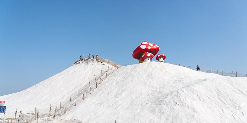 【台南旅遊】七股鹽山!!2021年七股鹽山吉祥物,許願蘑菇來囉!!