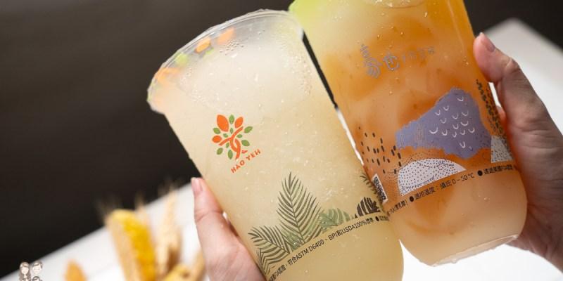 【台南飲料】炎熱的天氣,來杯豪也手作茶飲的冰糖檸檬冰沙系列,酸V酸V超消暑!