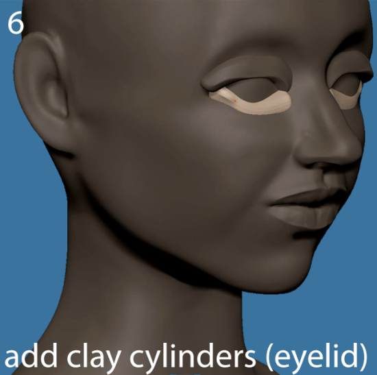 Add cylinders for the eyelids