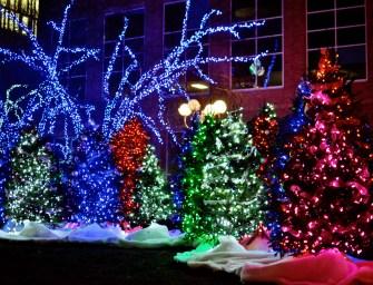 Photo Essay: Best Holiday Lights 2014