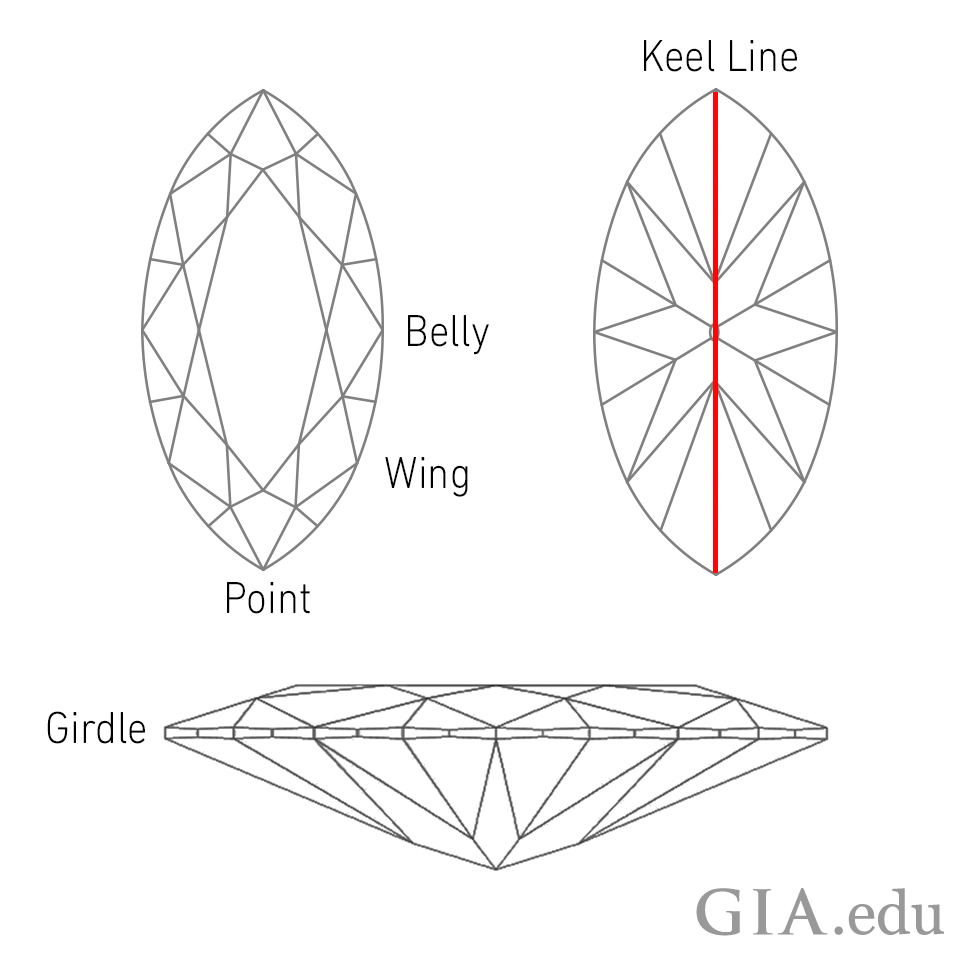 Parts of a marquise diamond anatomy (belly, wing, point