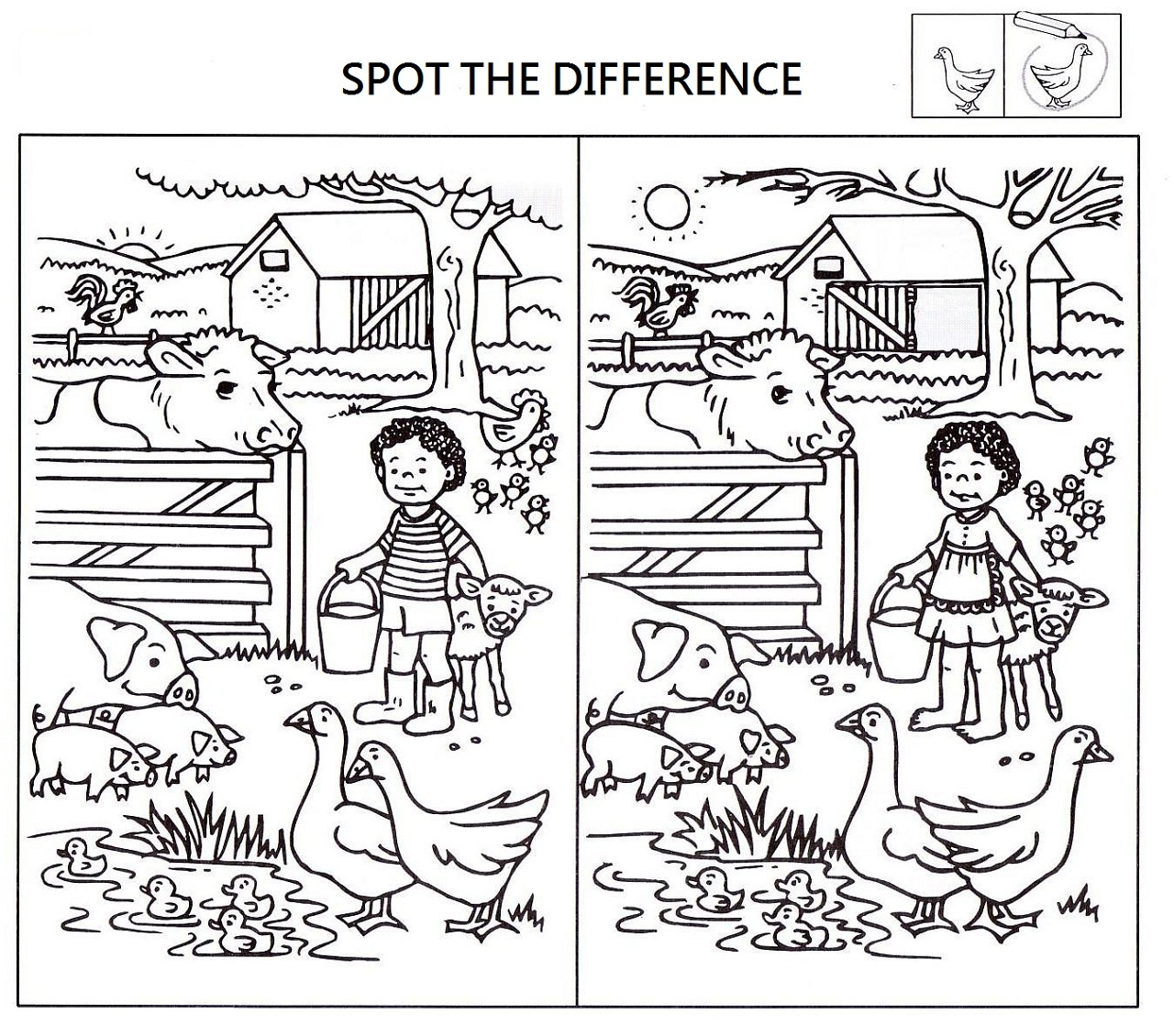 Spot The Differences