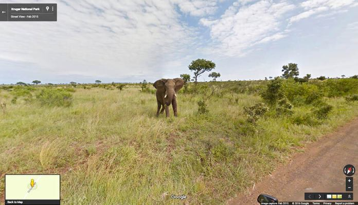 google-street-view-south-africa-mzansi-experience-ed