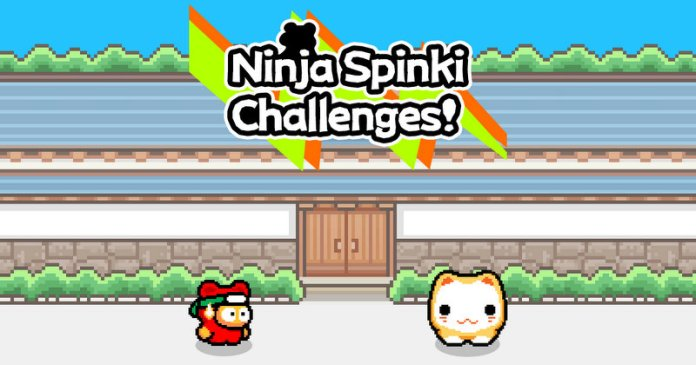 Ninja Spinki Challenges Flappy Bird