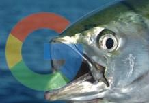 Google Pixel 3 Albacore