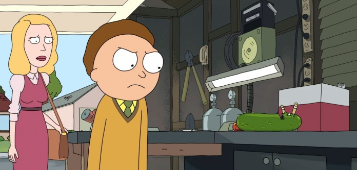 Rick and Morty Adult Swim Pickle Rick