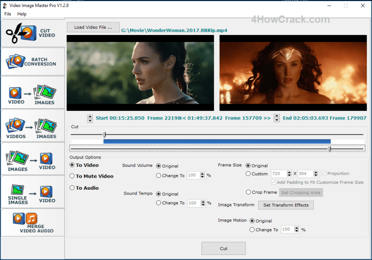 Video Image Master Pro Registration Code Download