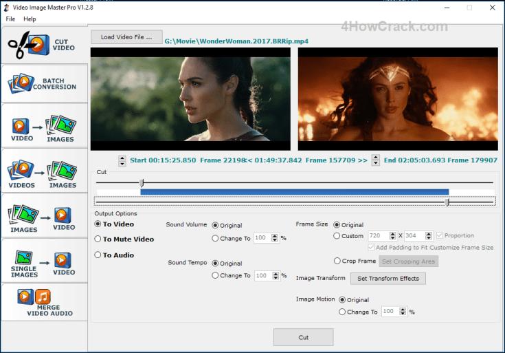 Video Image Master Pro Registration Code Download