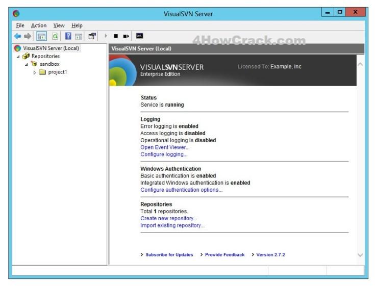 VisualSVN Server Enterprise Serial Key Download