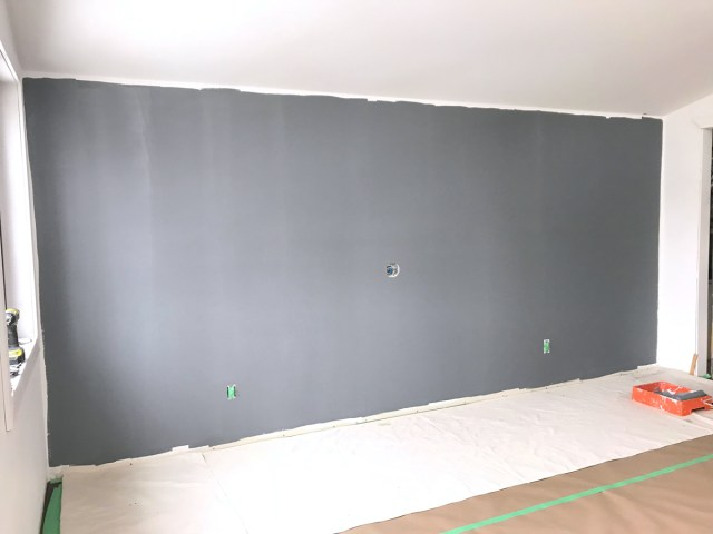 Wall painted with PARA Paints' Color Journeys Philosophical (412E) fantastic coverage after only one coat