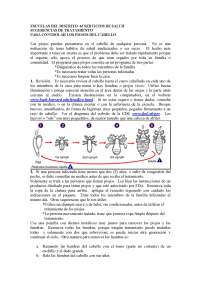 spanish-lice-treatment-suggestions-2-2-06_page_1