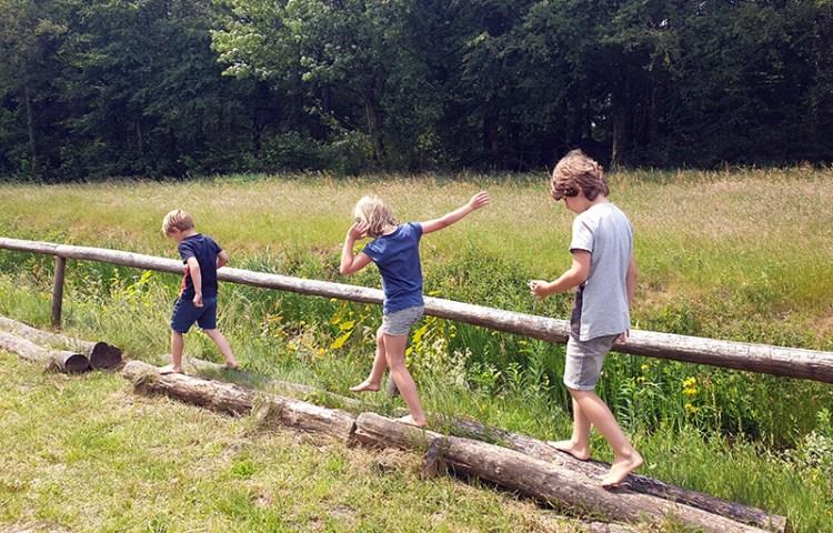 Het blotevoetenpad in Natuurpark Drents-Friese Wold