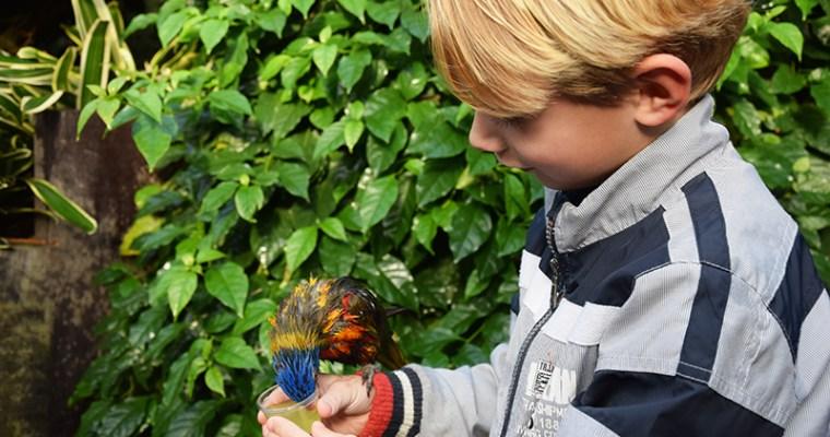 Texel Zoo, de verrassing van het eiland