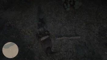 Osso Dinosauro 24 Luogo - Red Dead Redemption 2, dove trovare tutte le ossa di dinosauro
