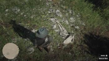 Osso Dinosauro 6 Luogo - Red Dead Redemption 2, dove trovare tutte le ossa di dinosauro