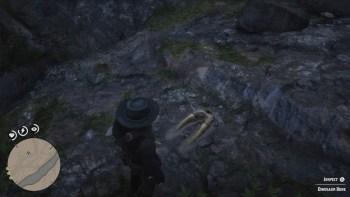 Osso Dinosauro 7 Luogo - Red Dead Redemption 2, dove trovare tutte le ossa di dinosauro