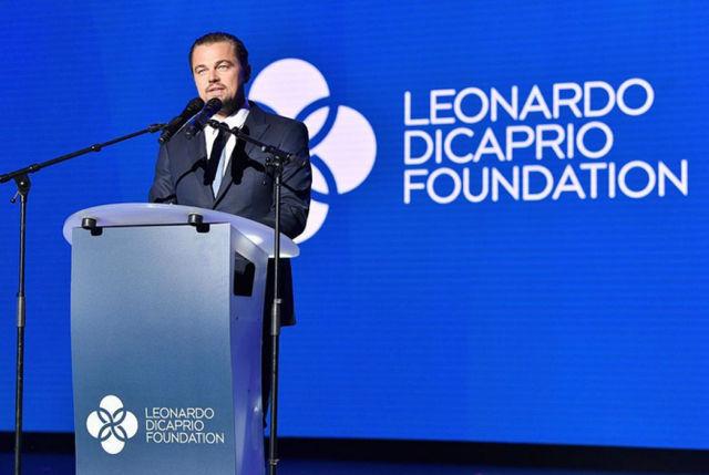 Leonardo DIcaprio 1 640x429 - No profit e nuove sfide