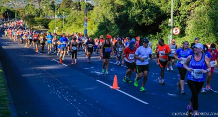 Two Oceans Marathon 2014_-12