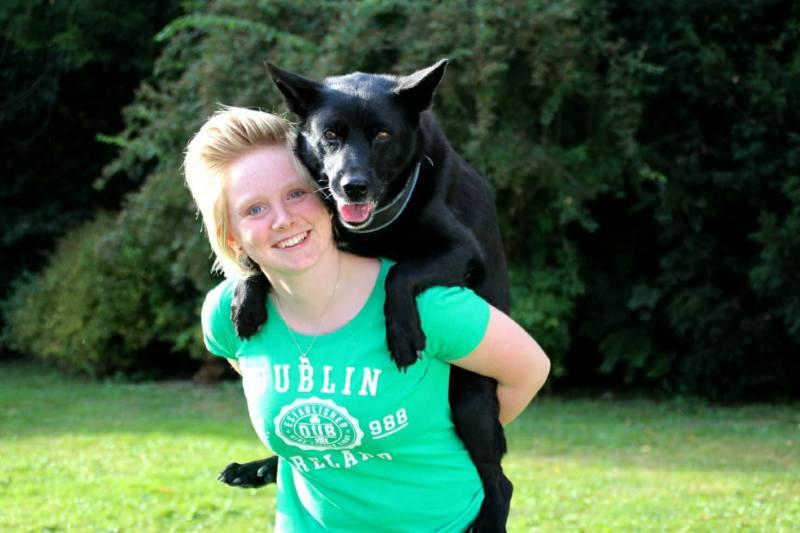 force-free positive dogtraining
