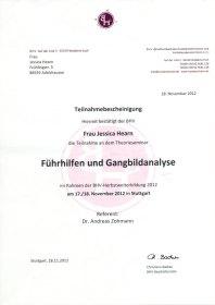 Theorieseminar Führhilfen und Gangbildanalyse