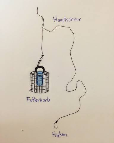 feederfischen grafik