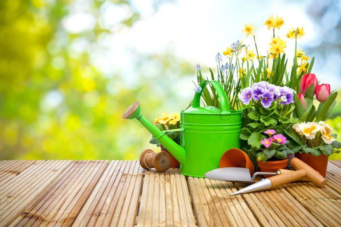 Gießkanne mit Gartenwerkzeug