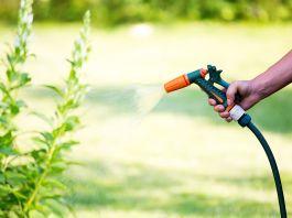 Gartenschlauch gießt