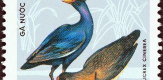 Wasserhahn (Vogel) auf Briefmarke
