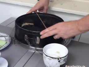 fliegengitter-insektenschutz kuchenform-diy