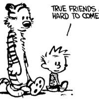 Misunderstanding Between Friends