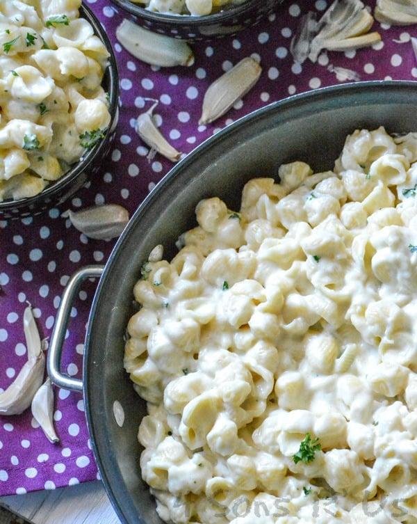 Creamy Garlic Shells Pasta