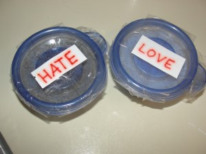 4 Sons 'R' Us: Emoto's Rice Ecperiment-- How much power does a word truly have?