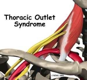 Phalloplasty nerve hook up
