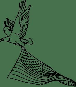 Coloring Book Bald Eagle clip art Free Vector / 4Vector